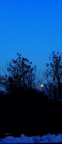 0003_Moonrise