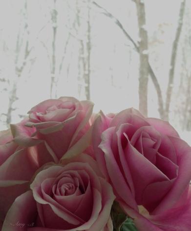 0026_A Valentine's Day postscript