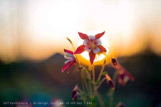 0051_a new sun rises