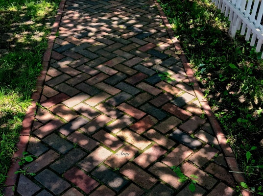 0186_in the path of its beam